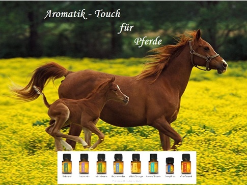 Aromatik – Touch Technik